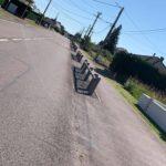 Arbres route de Creutzwald